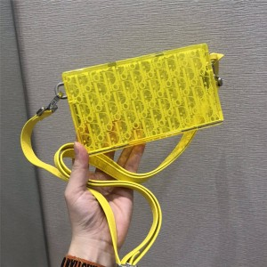 dior防伪码查询迪奥官网新款男女通用透明PVC盒子包斜挎包
