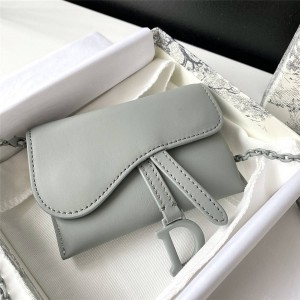 dior中国官网迪奥奢侈品论坛NANO 马鞍手拿包迷你链条包腰包S5654